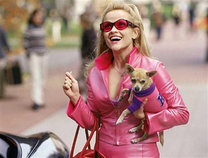 صورة - خطأ ساذج في فيلم Legally Blonde يفسد منطقية الأحداث.. هل لاحظته؟