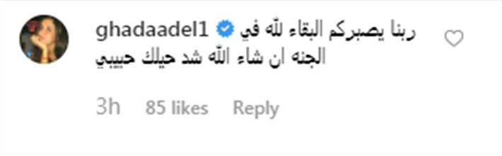 أحمد السعدني