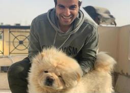 ليو وكيكي وستار.. تعرف على أسماء الكلاب التي يربيها النجوم