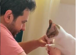 فيديو طريف- مصطفى خاطر يقلم أظافر قطته