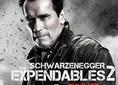 بالفيديو: شوارزنيجر يغير شعاره من أجل The Expendles 2
