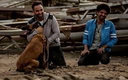 """موسم عيد الأضحى (5) - هل ينجح """"كلب بلدي"""" أحمد فهمي بعيدا عن أصدقائه؟"""